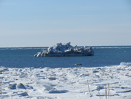 Paysage de la Mer à Rimouski