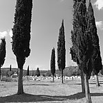 Tombes Bogomiles