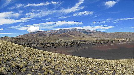 La Reserva Provincial La Payunia