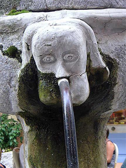 Détail de la fontaine aux lions