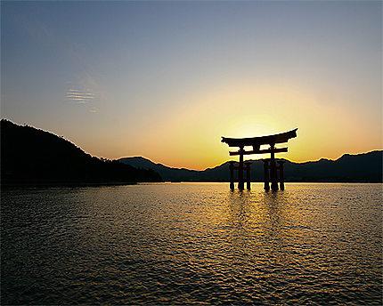 Le torii de l'île de Miyajima