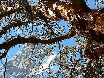 L'Huascaran