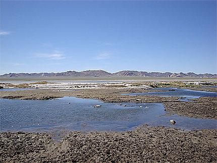 Lac mongol