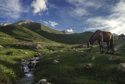 Vallée de Kul Ukok