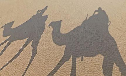 Essaouira - Balade des ombres