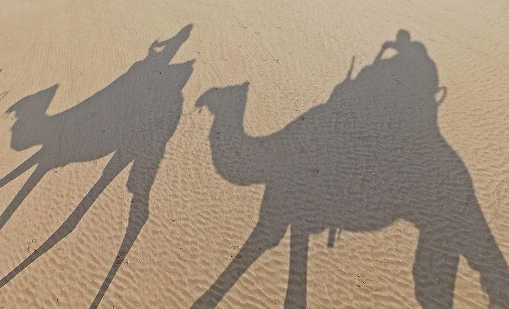 Balade des ombres à Essaouira, Maroc