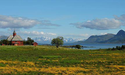Mélange de couleurs aux Iles Lofoten