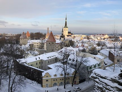 Vue sur la veille ville de Tallinn