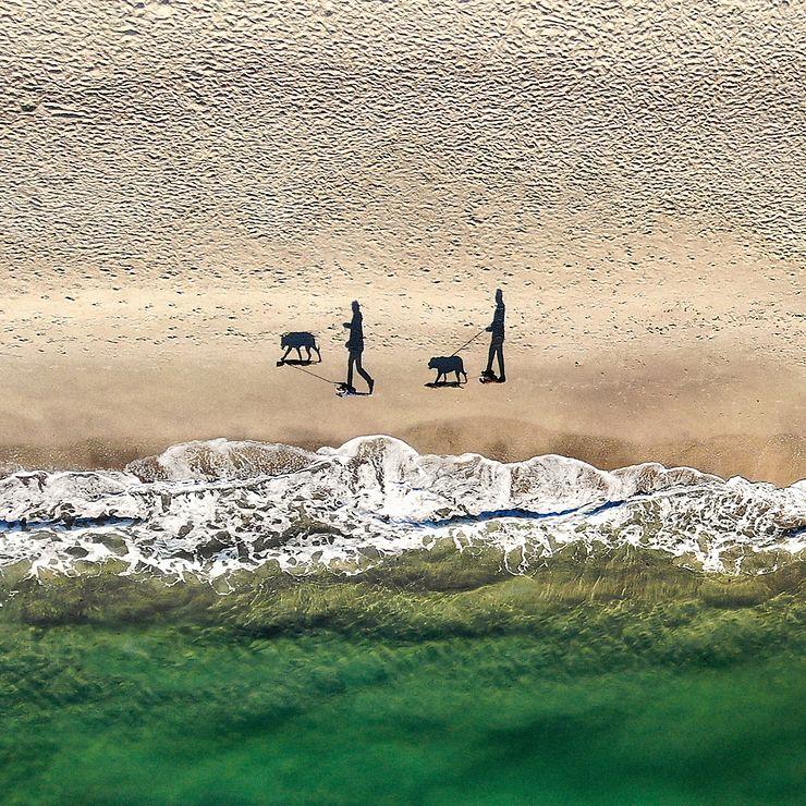 2 personnes, 2 chiens, 4 ombres, Côte de la Mer Noire, Odessa, Ukraine