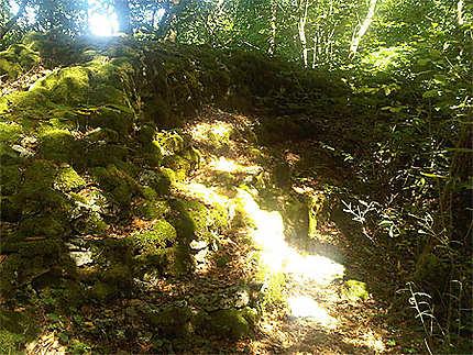 Amphithéâtre de Langres