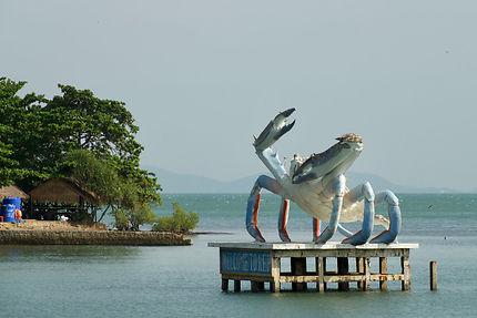Crabe bleu de Kep