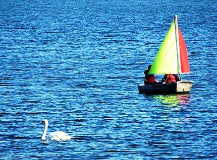 Rencontre amicale Lac de Créteil