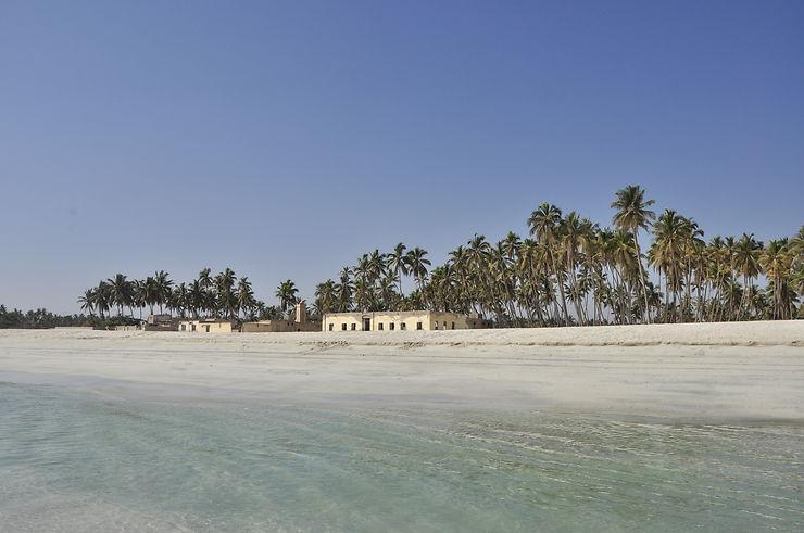 Retour de 23 jours à Oman - Entre wadis, déserts, montagnes et plages