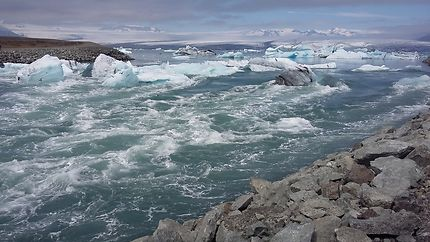 Glacier se jetant dans l'océan