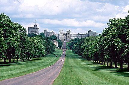 Arrivée sur Windsor