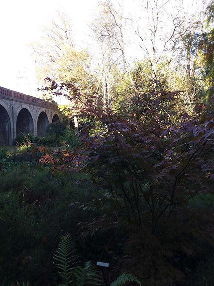 Balade dans le parc de Procé à Nantes