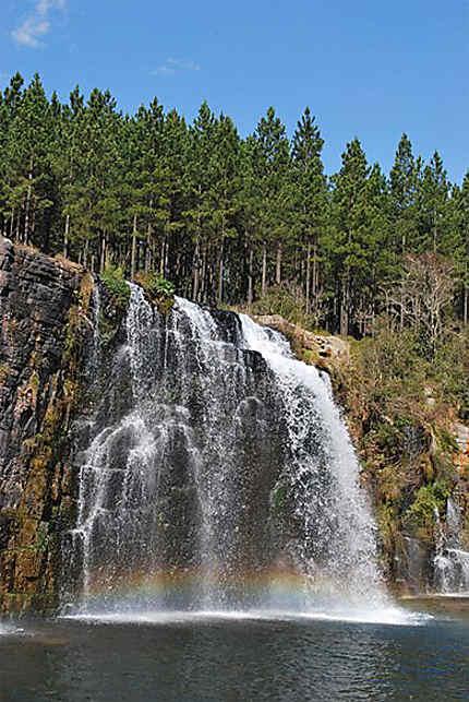 Forest falls sur la route des cascades