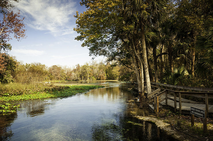 Wekiva Springs, côté nature