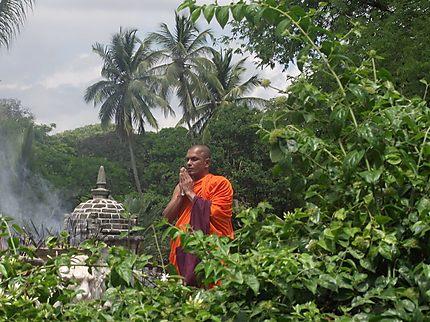 Moine à Kandy