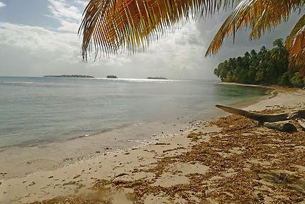 Une île caribéenne