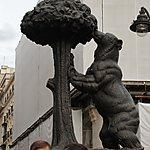 Ours de Madrid