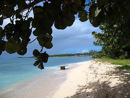 Plage de st Anne en Guadeloupe