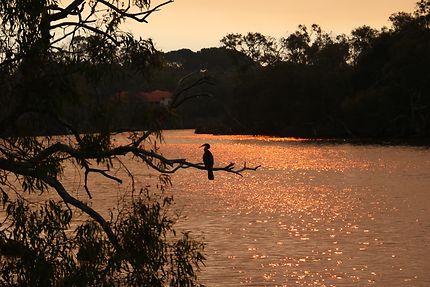 Coucher de soleil sur Guilford (Perth)