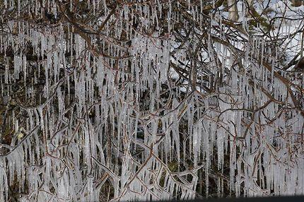 Essaim de stalactiques à Glen Coe en Écosse