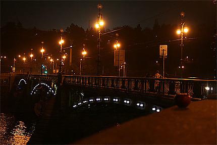 Le pont tchèque (Cechuv most)