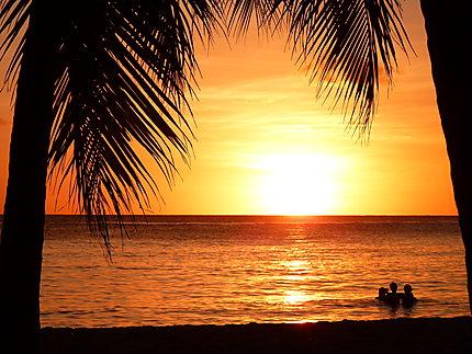 Coucher de soleil aux salines plages mer coucher de soleil les salines pointe sud - Coucher de soleil en guadeloupe ...
