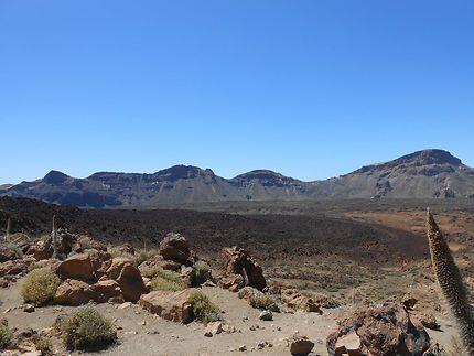 Parc National du Teide à Tenerife