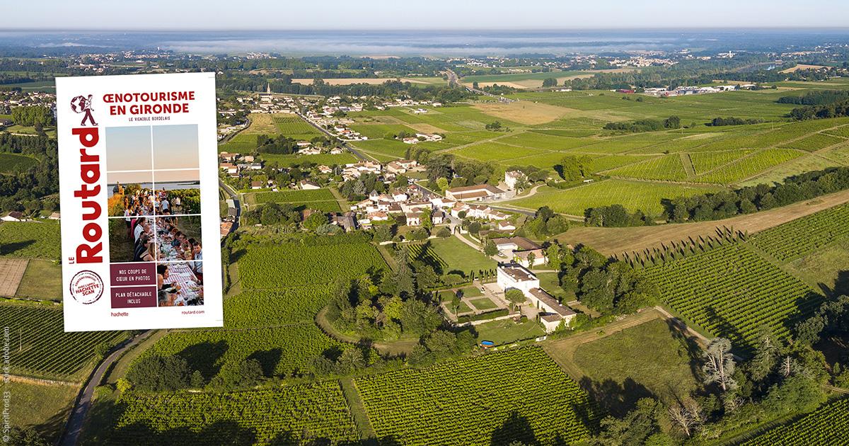 5 régions viticoles à explorer les papilles en éveil