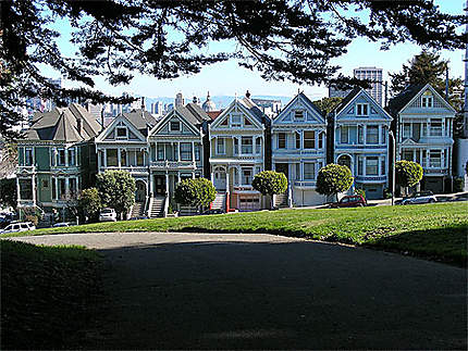 Painted Ladies at Alamo Sqaure