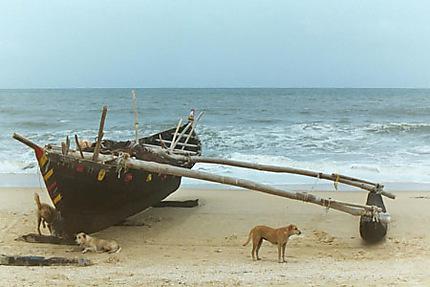 Bateau à Goa