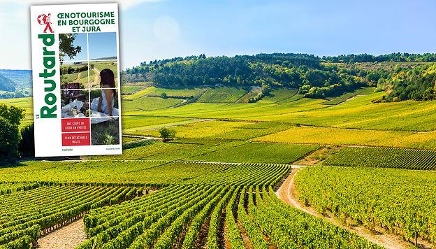 L'oenotourisme en Bourgogne et Jura avec le Routard elitravo - stock.adobe.com