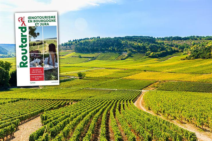 L'oenotourisme en Bourgogne et Jura avec le Routard