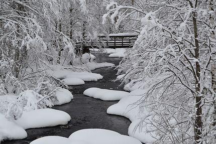 Rivière en Laponie finlandaise