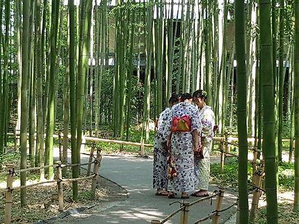 Promenade historique à Arashimaya