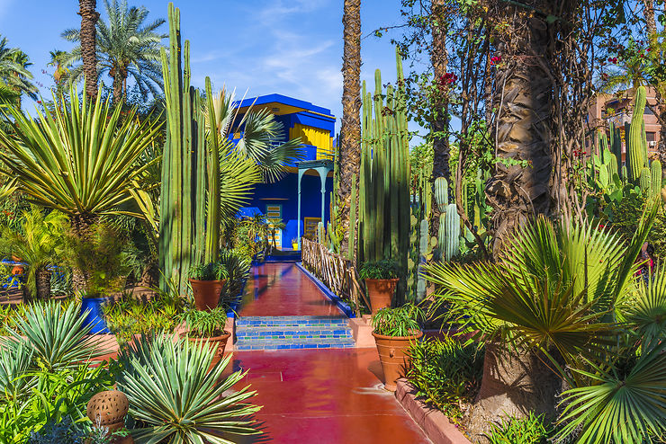 les plus beaux jardins du monde jardin majorelle marrakech maroc. Black Bedroom Furniture Sets. Home Design Ideas