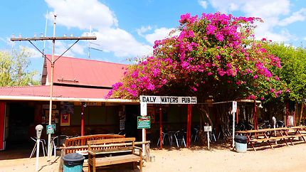 Daly Waters Pub