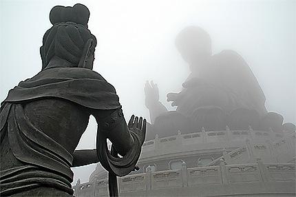 Bouddha dans la brume
