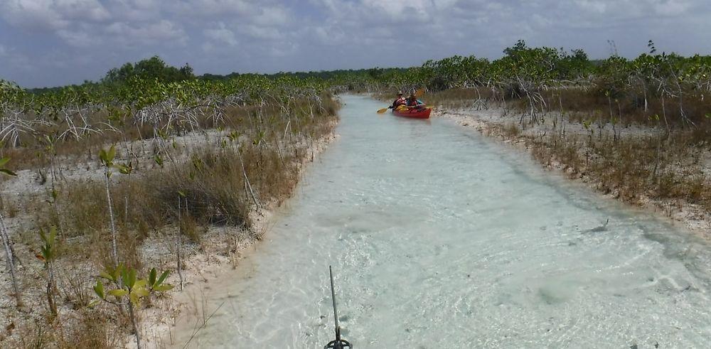 Retour de 3 semaines au Yucatán au Mexique