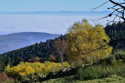 L'automne dans les Vosges