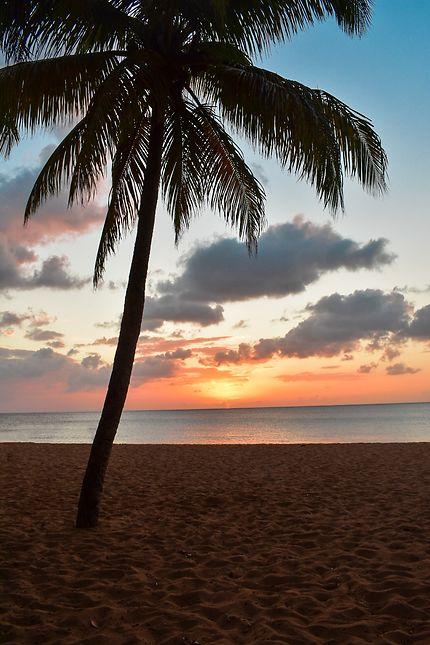 Coucher de soleil sur la plage de la grande Anse