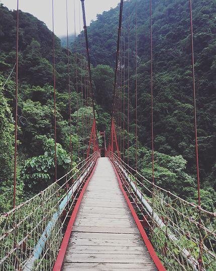 Pont suspendu Taïwan Dongpu