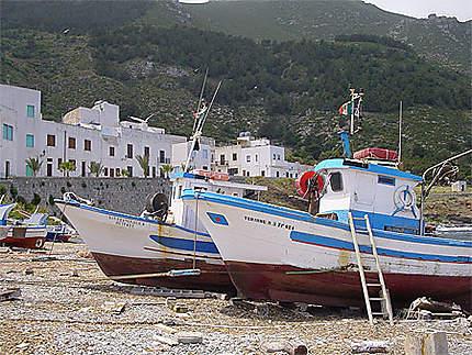 Bateaux à Marettimo