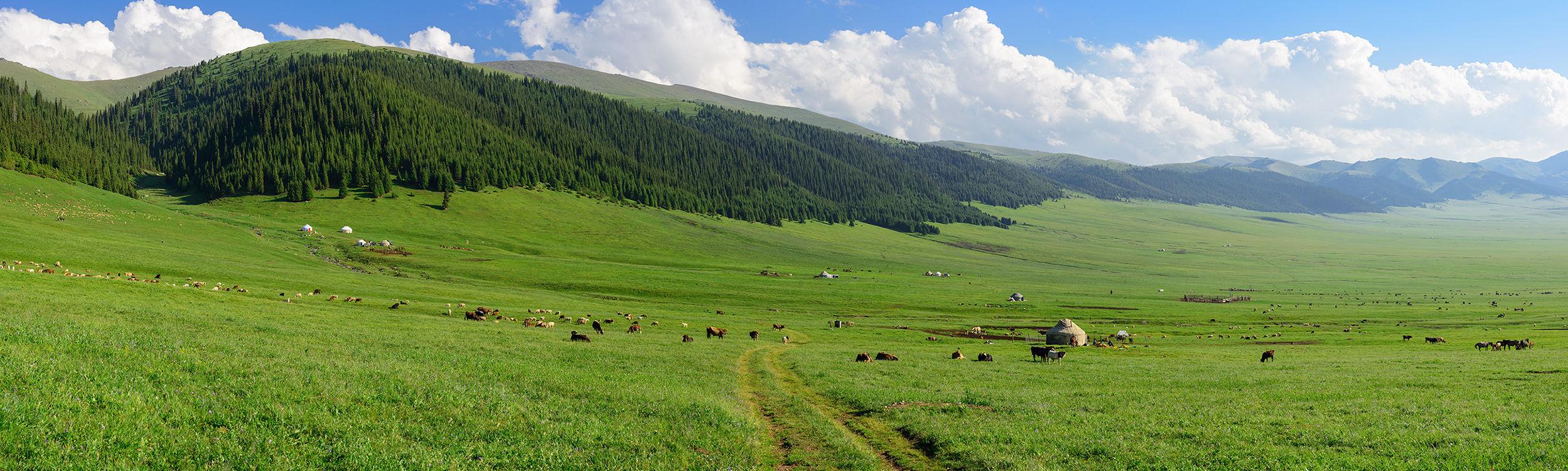 Kazakhstan rencontres culture rencontres en ligne Diaries Daily Mail co Royaume-Uni