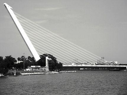 Pont de l'Alamillo à Séville