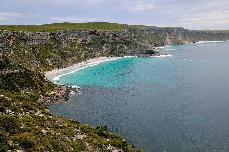 Kangaroo Island : une île au large de l'Australie