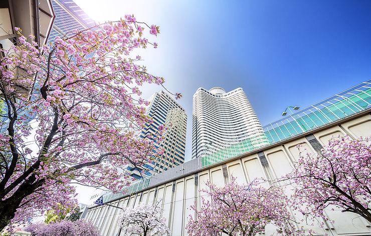 Le Japon serait-il donc un pays de contradictions ?